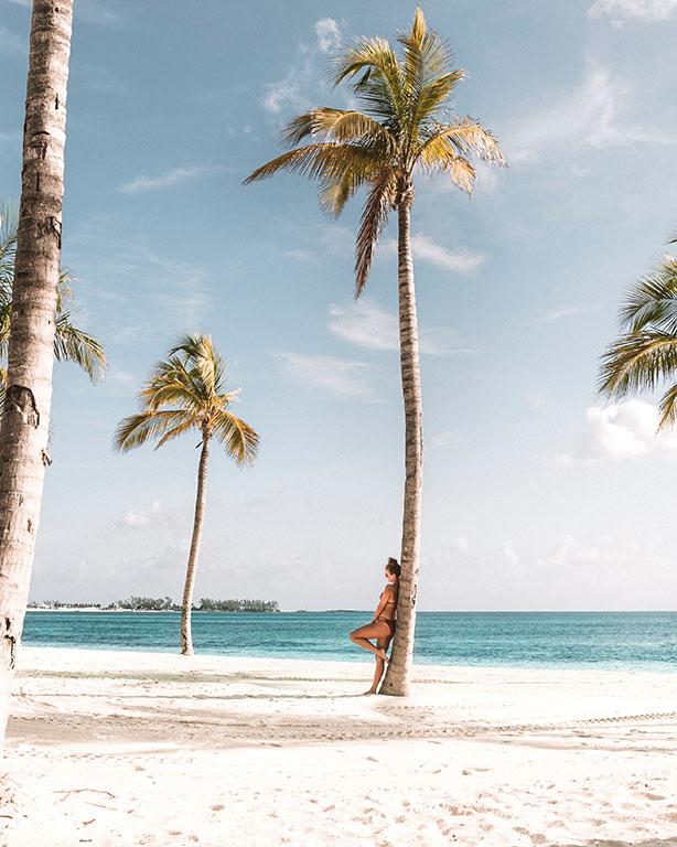 hot bikini pose palm tree